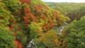 ตุลาคม Hachimantai ในฤดูใบไม้ร่วงใบไม้ - ทิวทัศน์จากสะพาน Morino 48723744