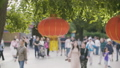 Lanterns on the street of Beijing by day 48735356