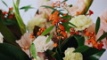 Closeup floral arrangement. Flowers in a glass vase. Woman picking fresh flowers to create beautiful 48800540