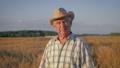 Portrait Of An Elderly Caucasian Man Farmer In Wheat Field At Sunset 48839462