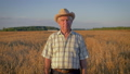 Elderly Caucasian Man In A Cowboy Hat Walk In A Field Of Wheat At Sunset 48841289