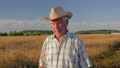 Old Caucasian Man In A Cowboy Hat Walk In A Field Of Wheat At Sunset 48863593