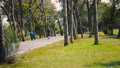 Park with people activities.Green field and trees. 48867168