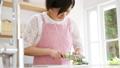 Cooking housekeeping kitchen knife 48891940