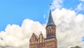 Kaliningrad Cathedral on the island of Kant. Kirch 48995720