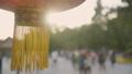 Lantern in Beijing by day 49001059