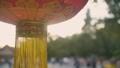 Lantern in Beijing by day 49001060