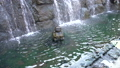 定山源泉公園 -温泉たまごの湯-(移動撮影) 49065013