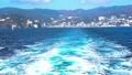 海とカモメ 49178096