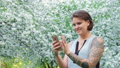 Cute young brown haired woman is chatting with smartphone in the blooming apple tree garden in sunny 49187085