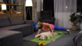Active woman doing pushups from the floor with pet 49228279