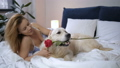 Grateful woman owner caressing dog for rose in bed 49228375