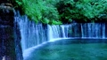 白糸の滝 (軽井沢) 49288206