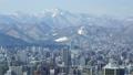 都市風景 49291620