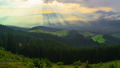 The Mountain Forest on Background of Sunset 49320824