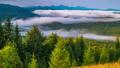 Fantastic Sunrise over the Foggy Summer Mountain 49320830