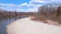 鸟瞰河和蓝天秋田县自然风景3月 49367291