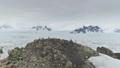 Antarctica gentoo penguin rock coast aerial view 49381421