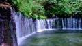 白糸の滝 (軽井沢) 49509396