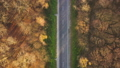 View from the height on the road surrounded by autumn forest 49544213