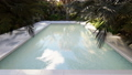 Beautiful swimming pool on a lost tropical island on a clear Sunny day. Looped realistic 3D 49564875
