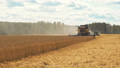 Combine harvester gathers wheat crop at farmland 49649040