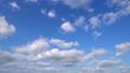 青空 ノーマルスピード 49691676