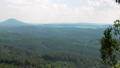 picturesque top view on dense green forest in natural park reserve 49722196