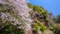春の古座川町 49736998