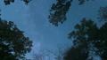 森のなかで見上げた空を動く天の川(ズームイン) 49761207