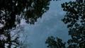 森のなかで見上げた空を動く天の川(縦・パンニング) 49761271