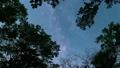 森のなかで見上げた空を動く天の川 49762611