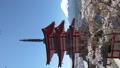 桜咲く新倉山浅間公園・忠霊塔と富士山 49822069