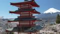 桜咲く新倉山浅間公園・忠霊塔と富士山 49822071