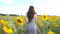 Unrecognizable beautiful girl running on yellow sunflower field. Happy young woman jogging through 49892795