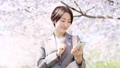 女商人櫻桃智能手機 49893136