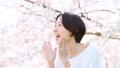 櫻花女人支持歡呼 49893142