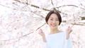 櫻花婦女 49893146