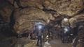 鍾乳洞 洞窟探検 探検の動画 49925145