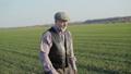 Senior farmer walks on spring wheat field in sunny day 49948601