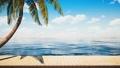 鮮豔細緻的全景景觀圖:夏天海邊木製平台特寫背景(Full HD 超高畫質,高分辨率 CG 渲染∕著色 50034959