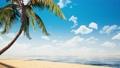 鮮豔細緻的全景景觀圖:夏天海邊木製平台特寫背景(Full HD 超高畫質,高分辨率 CG 渲染∕著色 50034961