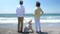 シニア夫婦と犬 浜辺 会話 50060425