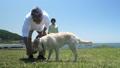 シニア夫婦と犬 フリスビー  パン 50060449