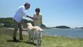 シニア夫婦と犬 フリスビー  ジンバル 50060453