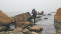 ビーチ 景色 風景の動画 50067456