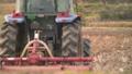 田んぼを耕すトラクター 50291119