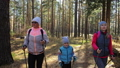 Woman do Nordic walking in nature. Girls and children use trekking sticks and nordic poles 50316856