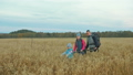People walk near beautiful mountains in wheat field. Family travels. People environment by mountains 50316863
