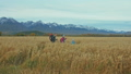 People walk near beautiful mountains in wheat field. Family travels. People environment by mountains 50316866